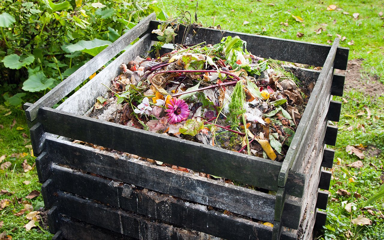 How to Start Composting in the Twin Cities