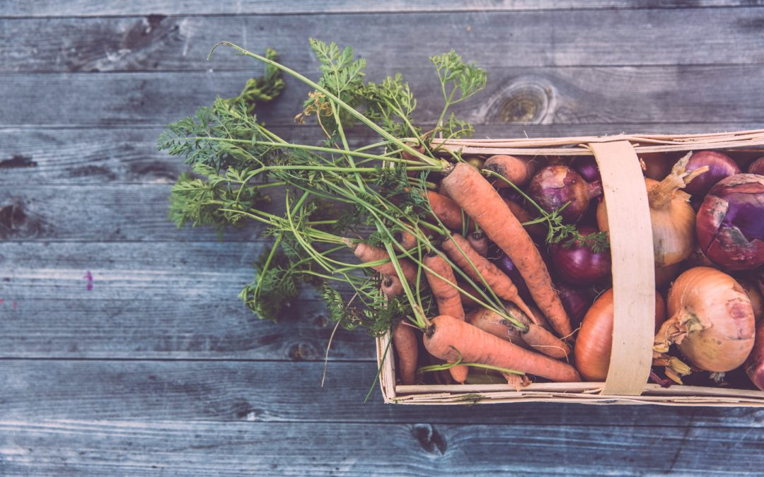 Best Plants and Vegetables to Plant in August